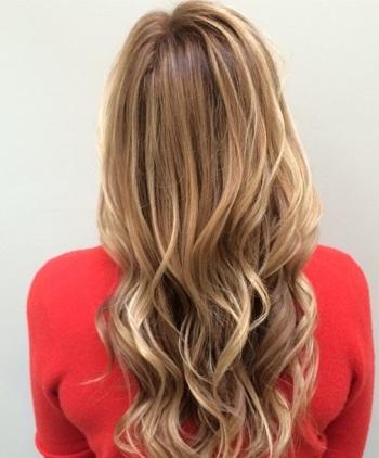 hair color gallery mane interest