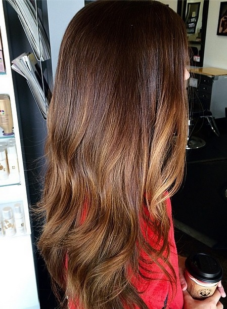 Rich brunette mane interest rich brunette hair color with a hint of highlights pmusecretfo Images