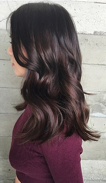 dark brunette hair color shades