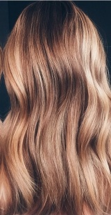 dark bronde highlights