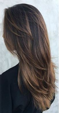 warm cocoa brunette highlights
