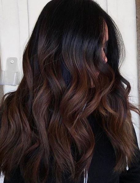 Hair Color Mane Interest